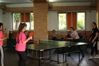 Tenis stołowy LO _18