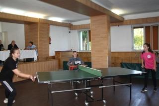 Tenis stołowy LO _6