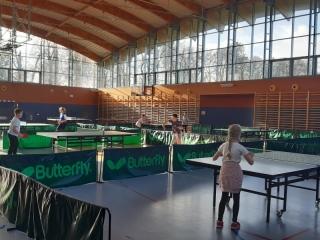 Tenis stołowy ID_2