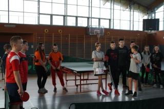 Tenis stołowy IMS _2