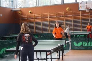 Tenis stołowy IMS _5