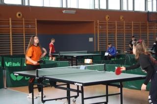 Tenis stołowy IMS _6