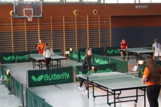 Tenis stołowy IMS _7