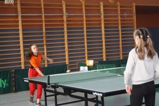 Tenis stołowy IMS _8